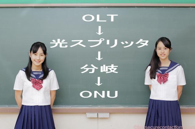 OLT→光スプリッタ→複数の光ファイバー回線に分岐→家庭のONU